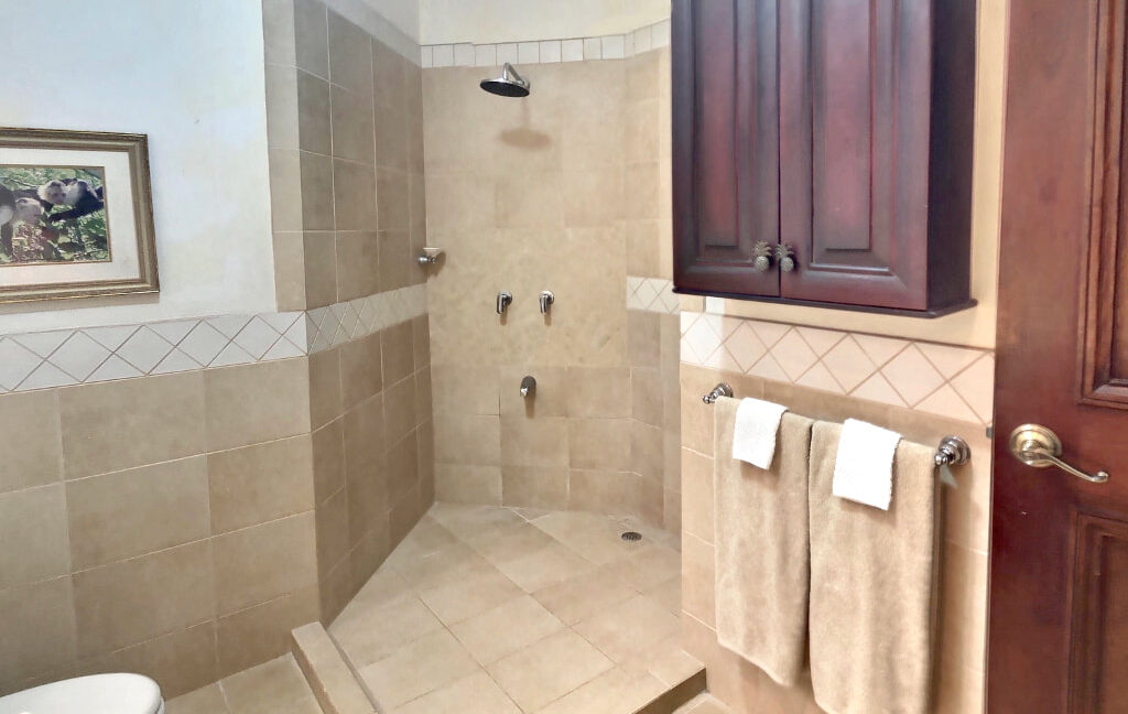 18-bougainvillea-8209-walk-in-shower_orig
