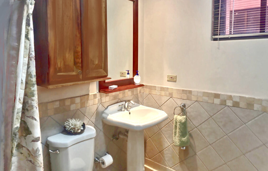 20-bougainvillea-8209-bathroom-tropical_orig