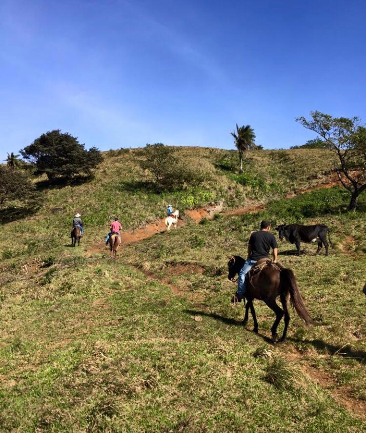 Finca en las Pozas de Nicoya, Guanacaste