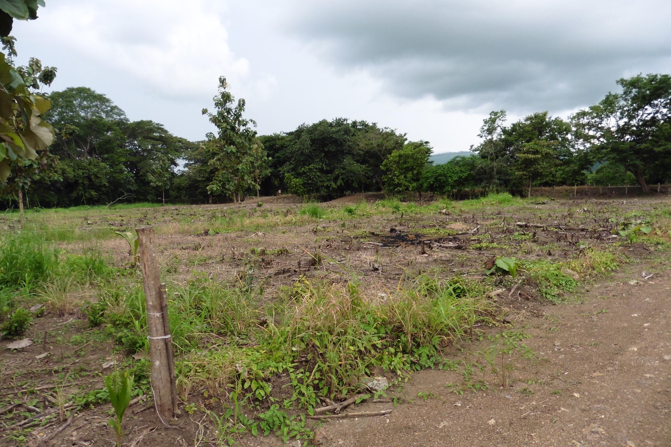Lote #13 en Eco comunidad ALA BLANCA (Guachipelín)