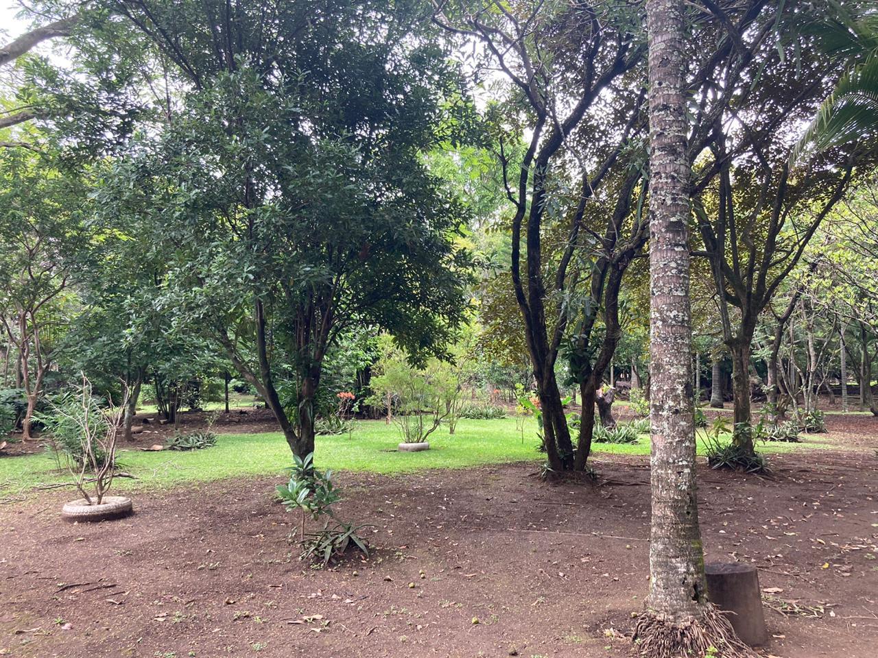 Terreno para desarrollar en Santa Ana