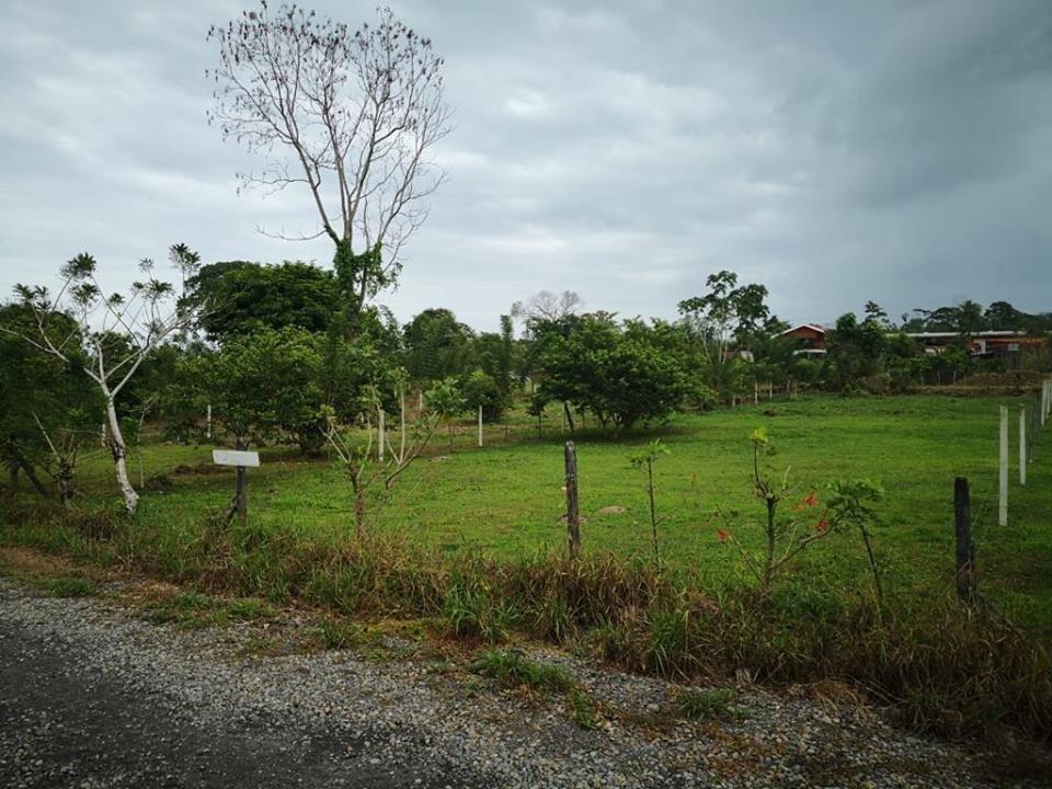 Venta de propiedad en Guápiles