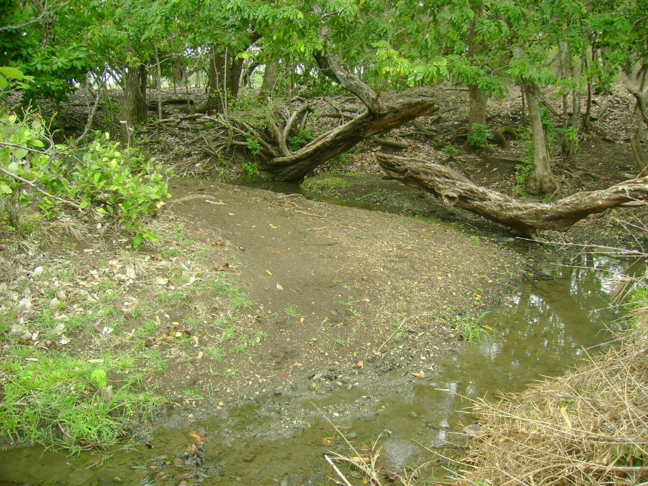 Terreno de 63 hectáreas en el sector Las Pozas (Nicoya)