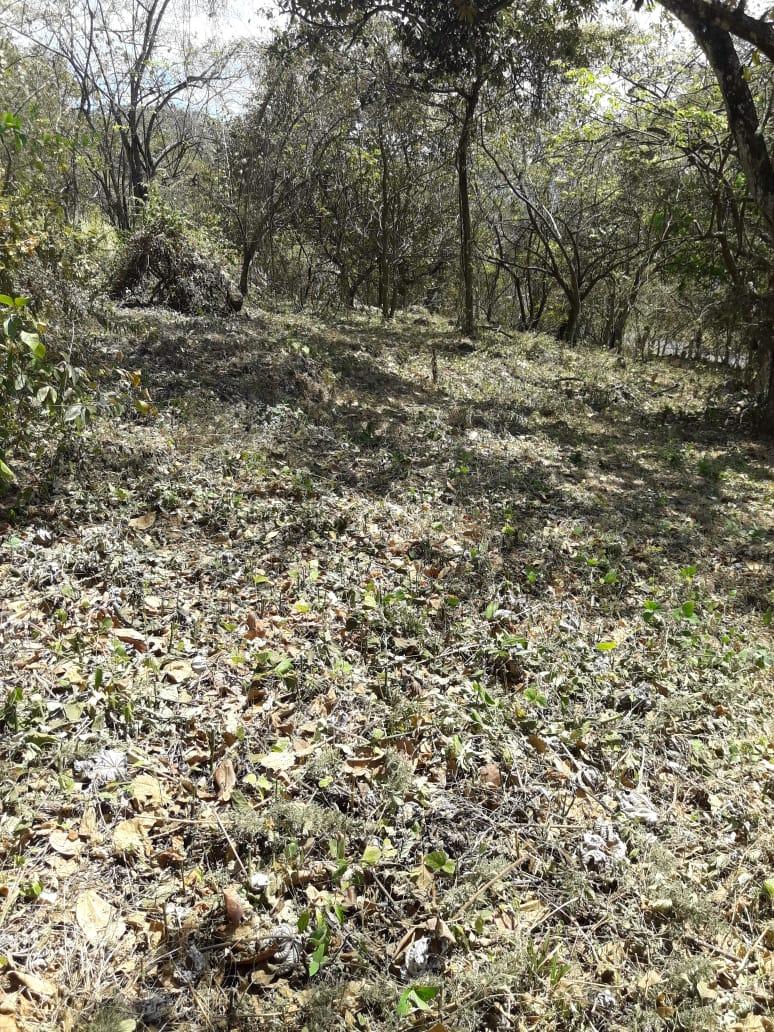 Venta de terreno en condominio Villas del Arroyo (La Guácima)