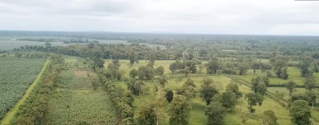 Venta de Finca de 60 hectáreas bellísima autosuficiente en Sarapiquí